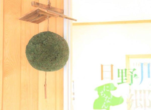 画像1: [予約]屋根付き杉玉 (1)