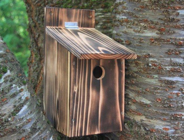 画像1: [予約]小鳥巣箱(片屋根タイプ)完成品 (1)