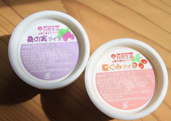 画像1: 木の実のアイス2種セット (桑の実アイス、夏ぐみアイス各6個入) (1)
