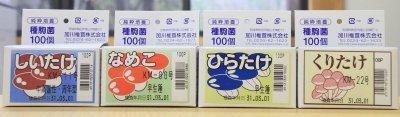 画像1: きのこ種駒ミニパック(100駒入り)