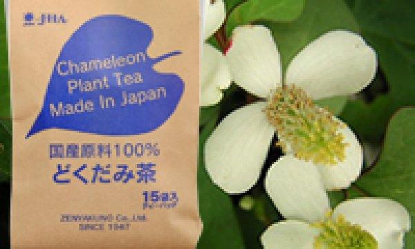 画像1: 国産原料100%どくだみ茶(TB) (1)