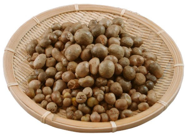 画像1: 自然薯ムカゴ(零余子) 500g (1)