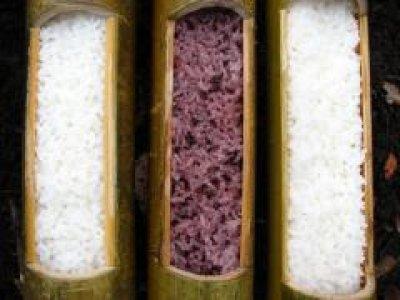 画像2: 竹飯ごう用竹(蓋加工無し)