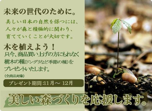 木を植えよう!キャンペーン